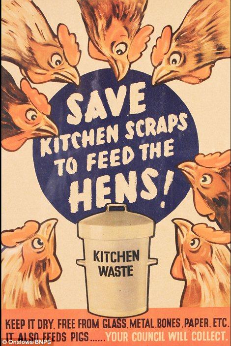 kitchen waste for hens